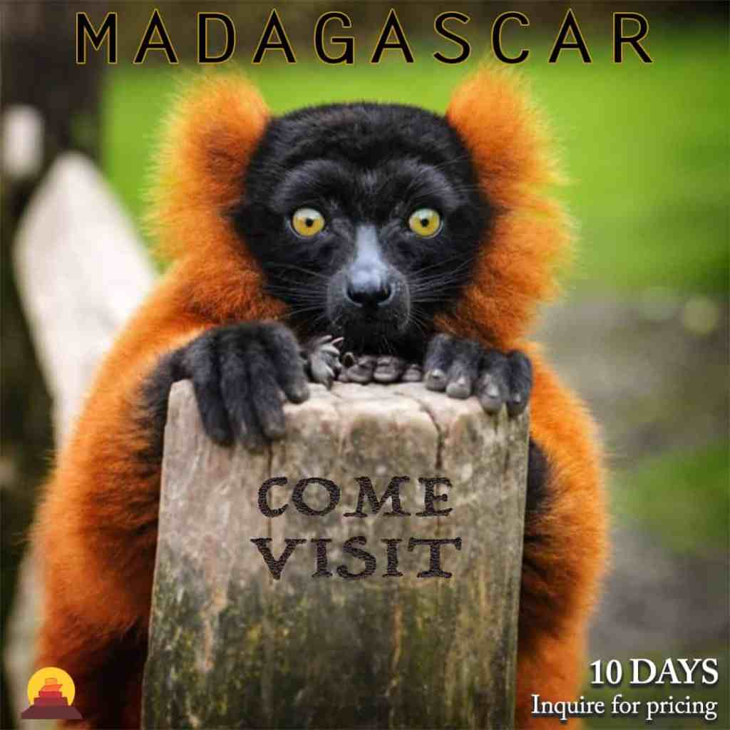 Vacation in Madagascar and see lemurs, while having private guides and drivers.